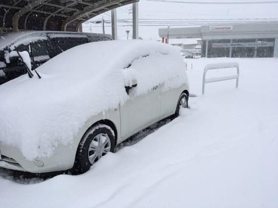 11年ぶりの大雪
